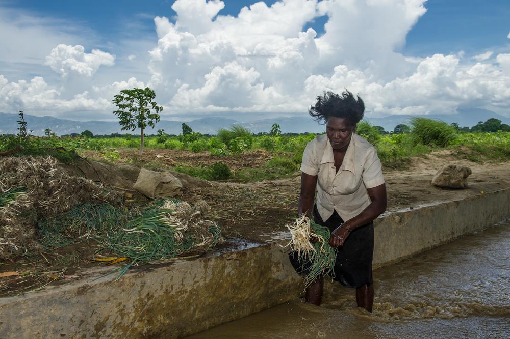 FINCA_Haiti-19.jpg