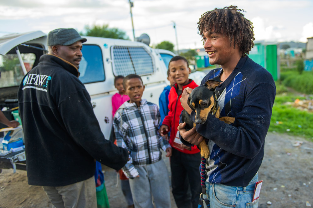 Sotywinga and the mobile team thrive on chatting up the residents, explaining the need for sterilization, bartering with free vaccinations and flea control treatments and one by one winning the trust of people who live far from the clinic itself.