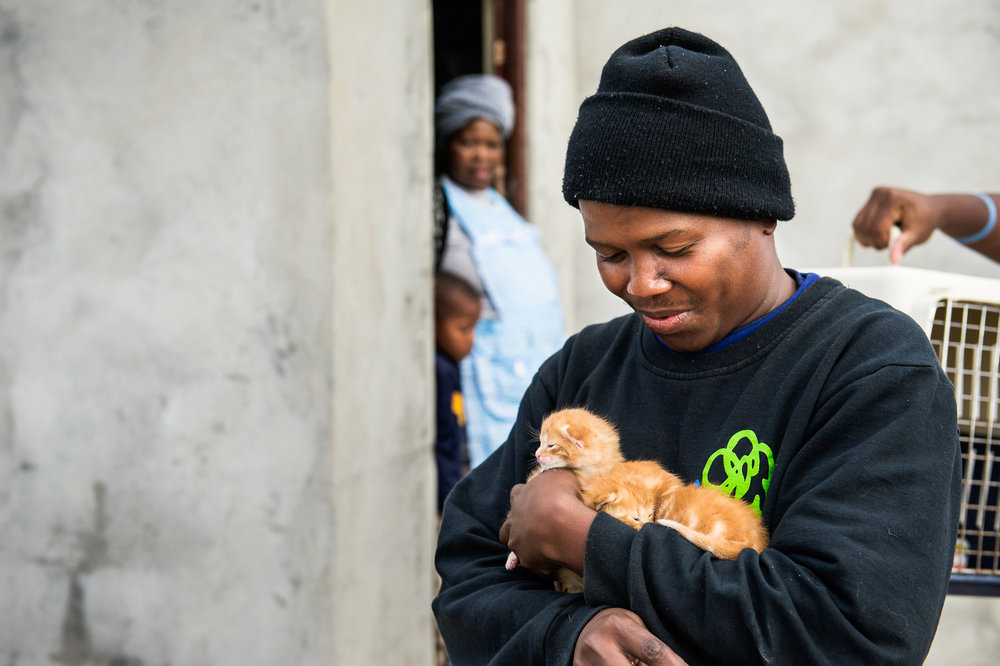 Sotywinga scoops up a litter of kittens from a family that called Mdzananda.