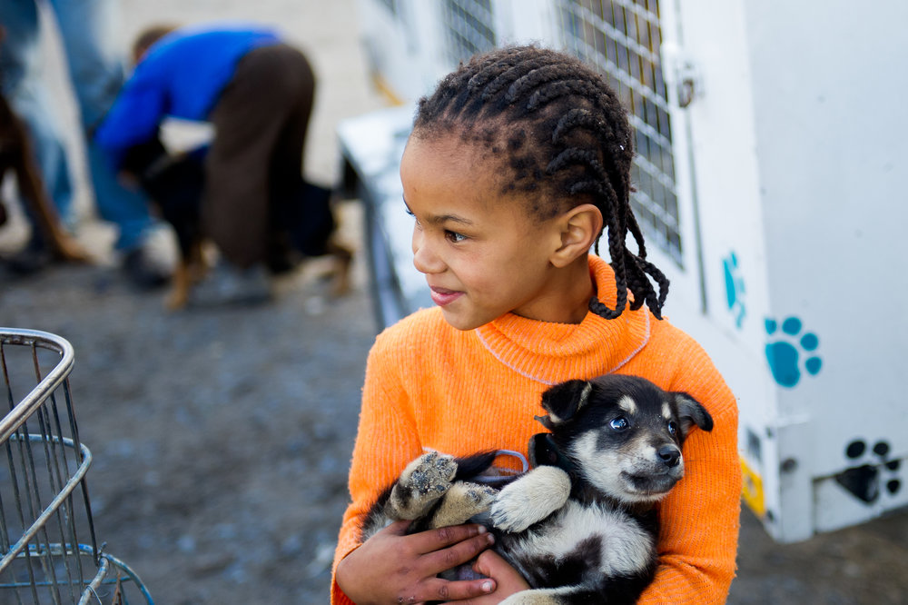 A young girl waits to have her puppy vaccinated. The mobile clinic staff takes extra time to teach children about the proper care of pets.