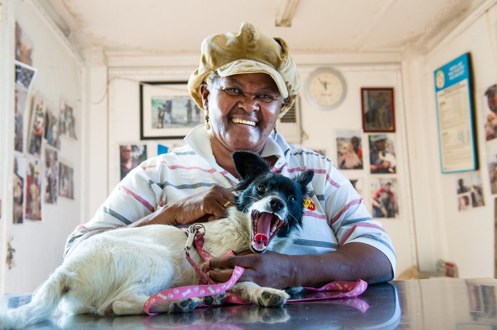 A local resident brings her dog to the clinic for a routine check-up. The clinic is beginning to see change in the way people interact with their pets. Outfitted with a proper leash and harness, this dog is the exception in Khayelitsha rather than the rule.