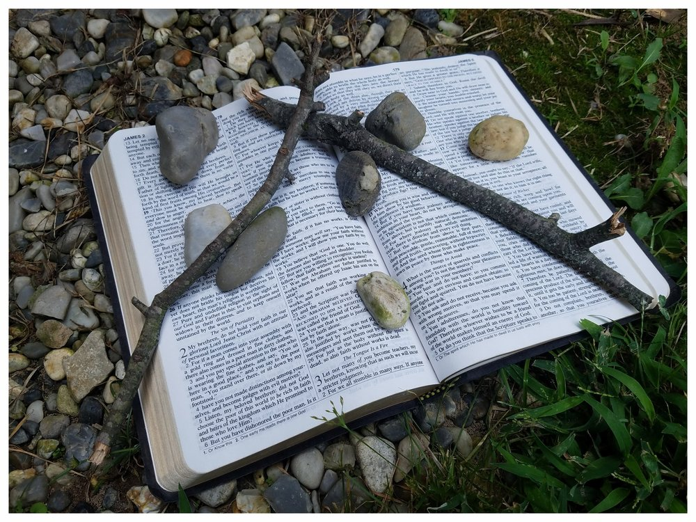 Sticks stones and Bible.jpg
