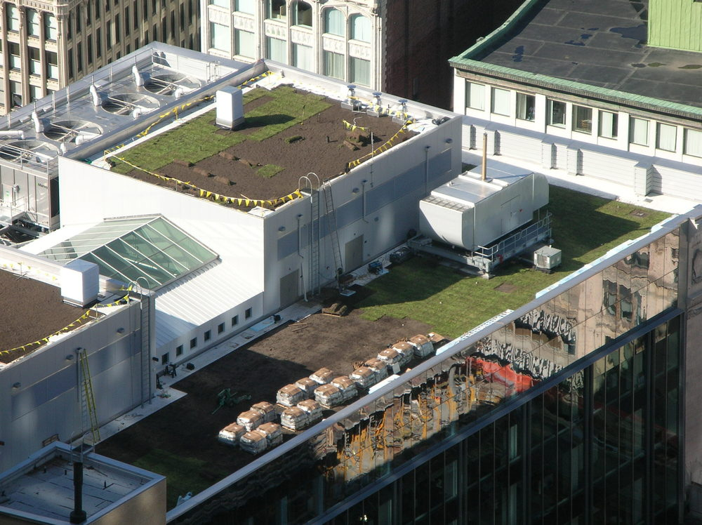 Installing a green roof on a high-rise building.