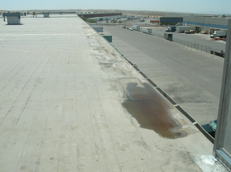 Here poor drainage leads to ponding water along the gutter edge of this low-slope roof. Ponding water can speed up the deterioration of the roofing material.