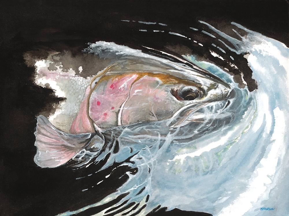 """Black Water Steelhead"""