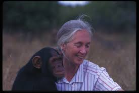 The beautiful  Jane Goodall and her friend