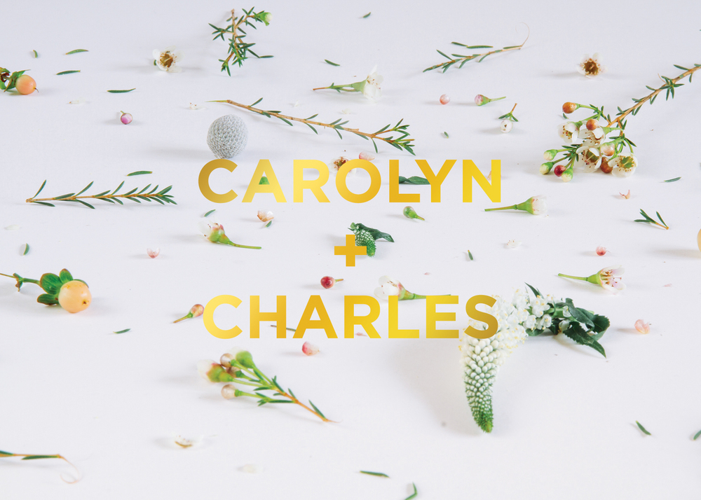 Carolyn + Charles Wedding _ 2015 Art Direction, Photography, Branded invitations