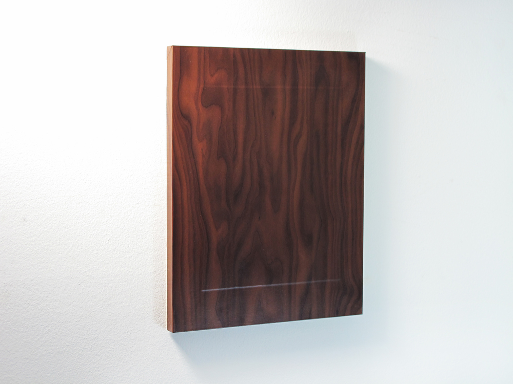 QENDRIM HOTI Walnut, 2014. Vinyl, photographic paper, wood panel, 14 x 11 inches.