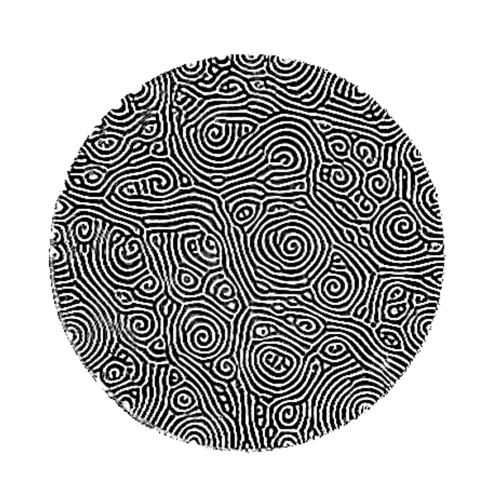 "STEPHEN MORRIS  Spiral Defect Chaos. 2015 Inkjet Print  36"" x 36"""