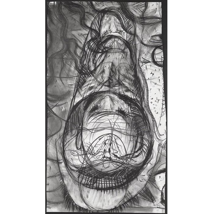 "In the MRI: coffin and chrysalis,  2012 Charcoal on paper 51"" x 28"""