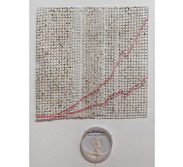 "Sierra Leone Ebola Graph ( detail), 2015 Grown salt crystals, wool, wire, halobacteria, petri dish 20"" x 20"" Photo by David Williams"