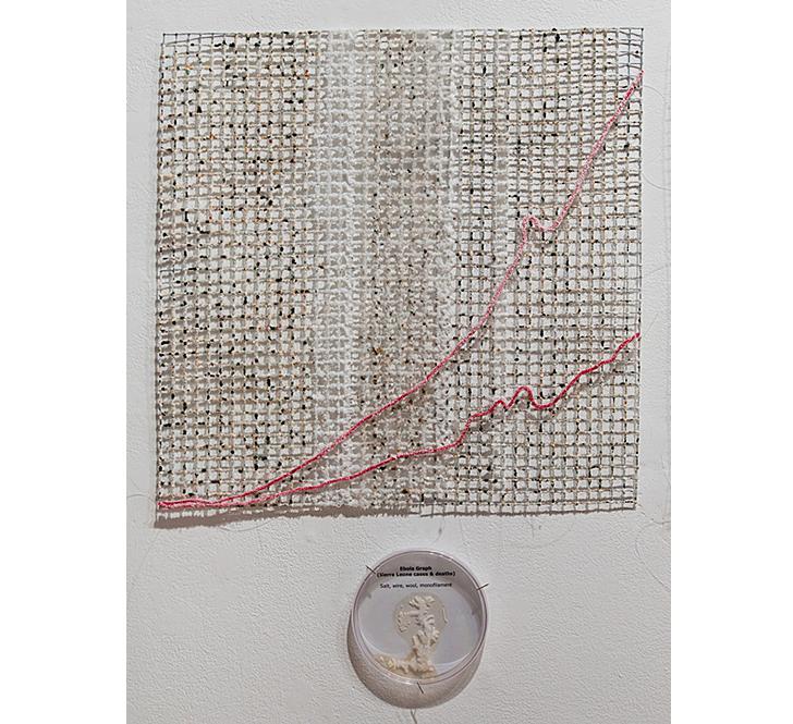 "Sierra Leone Ebola Graph ( detail) Grown salt crystals, wool, wire, halobacteria, petri dish 20"" x 20"" Photo by David Williams 2015"