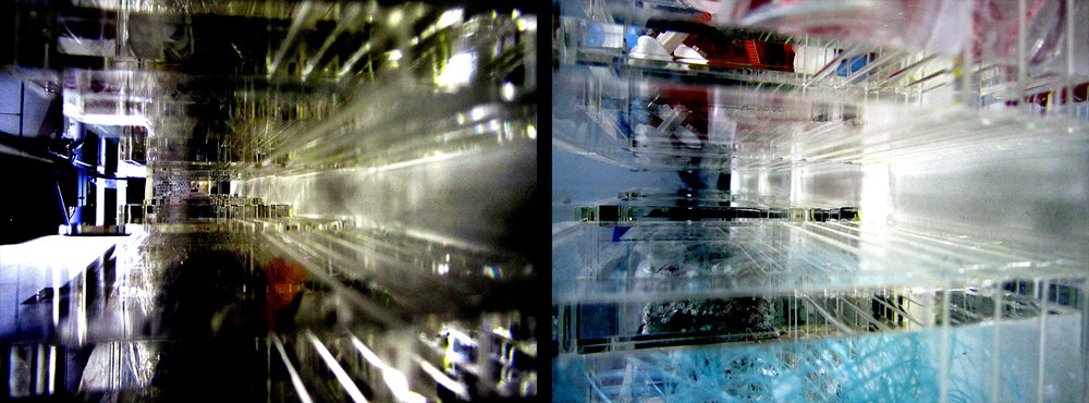 "Elaine Whittaker  BioFiction: Neo , 2016 Digital print 24"" x 18""   BioFiction: Trinity , 2016 Digital print 24"" x 18""   BioFiction: Neo  and  BioFiction: Trinity  are from a series of images that appear visually as deep space colliding buildings but in reality are based on acrylic boxes containing pseudo-medical/scientific objects and fictional specimens – blurring the boundaries between the animate and inanimate, the real and the manufactured; becoming a matrix with a synthesized fictional biological narrative."