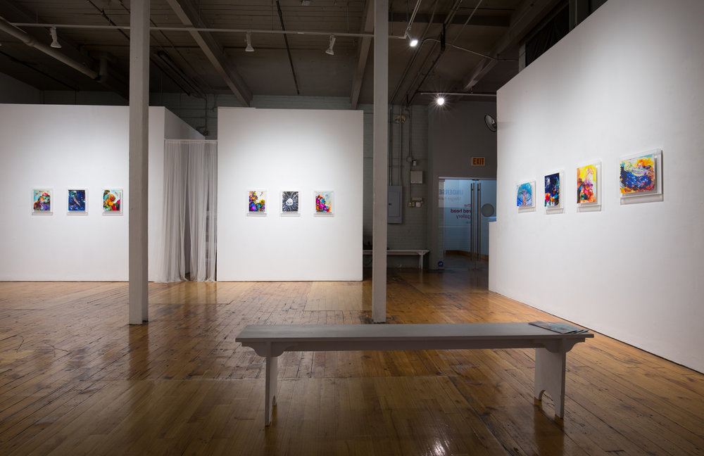 UnderSee,  2018 Installation view at the Red Head Gallery Photo by David Williams