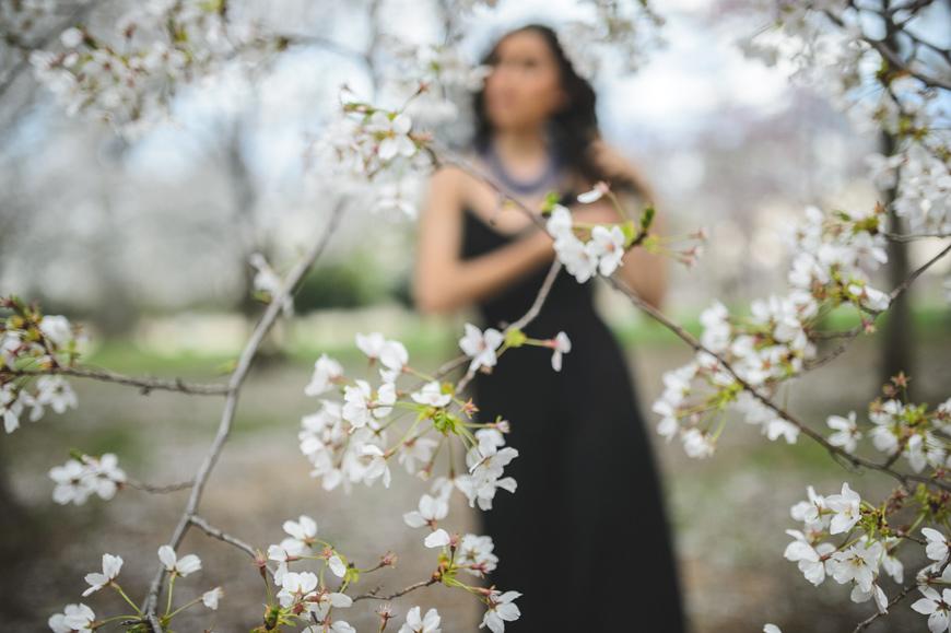 002 backfocus cherry blossom portrait