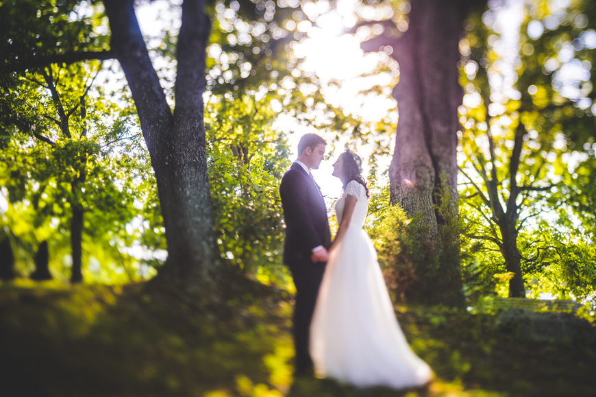 007 creative shot of bride and groom in small grove of trees