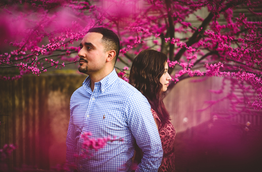005 engaged couple in pink flower trees.jpg