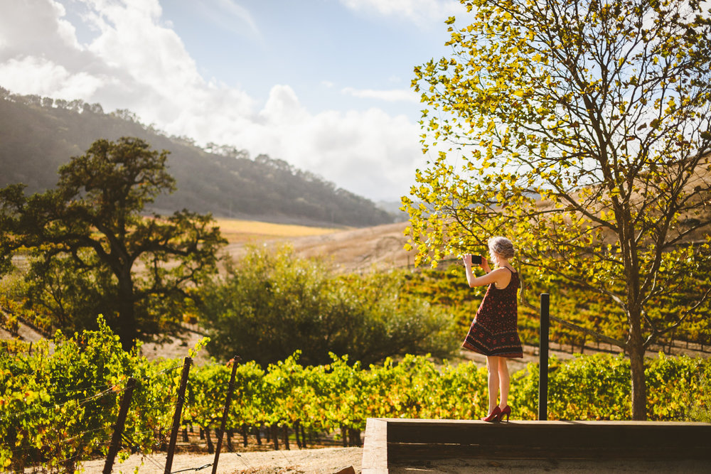 007 - maid of honor takes photos of beautiful california vineyard.jpg