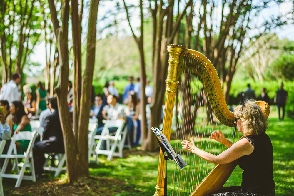 022 - harpist playing before wedding ceremony.jpg