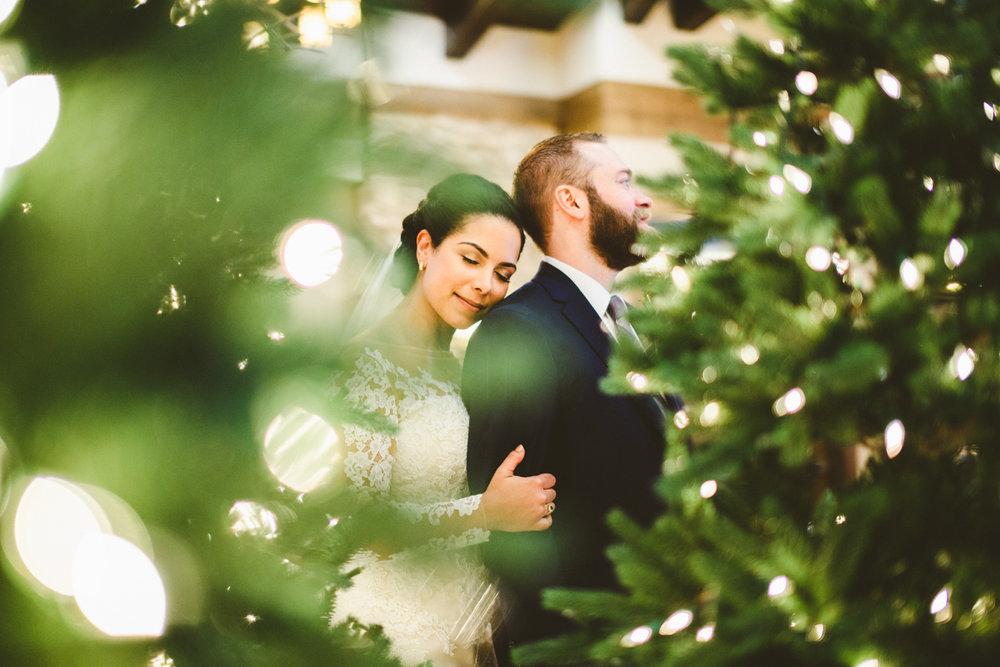 009 - maryland wedding portrait christmas lights.jpg