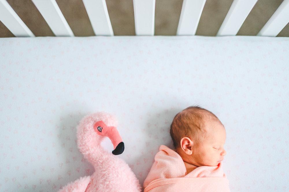 030 - newborn session with pink flamingo.jpg