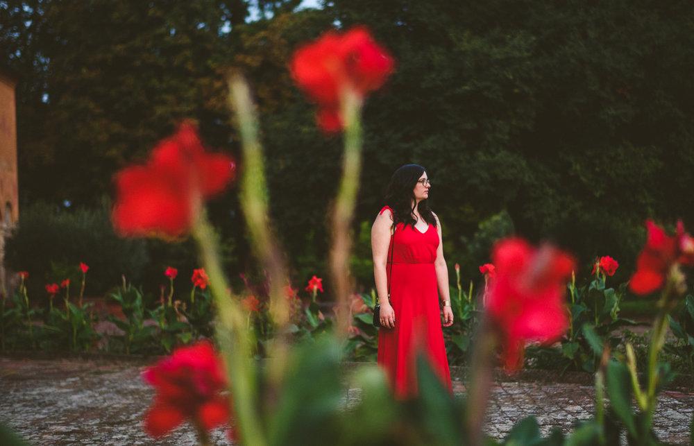 074 - 5 beautiful roses.jpg