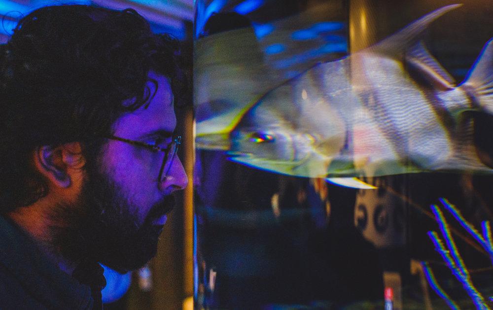 098 - baltimore acquarium.jpg