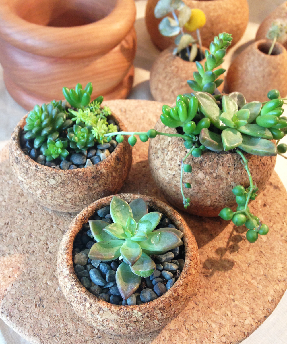 These mini planters got sold to my dear friend Elise, she bought all three!