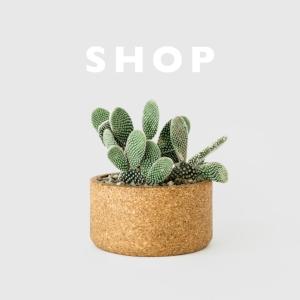 Shop_SQ_9.7.16.jpg