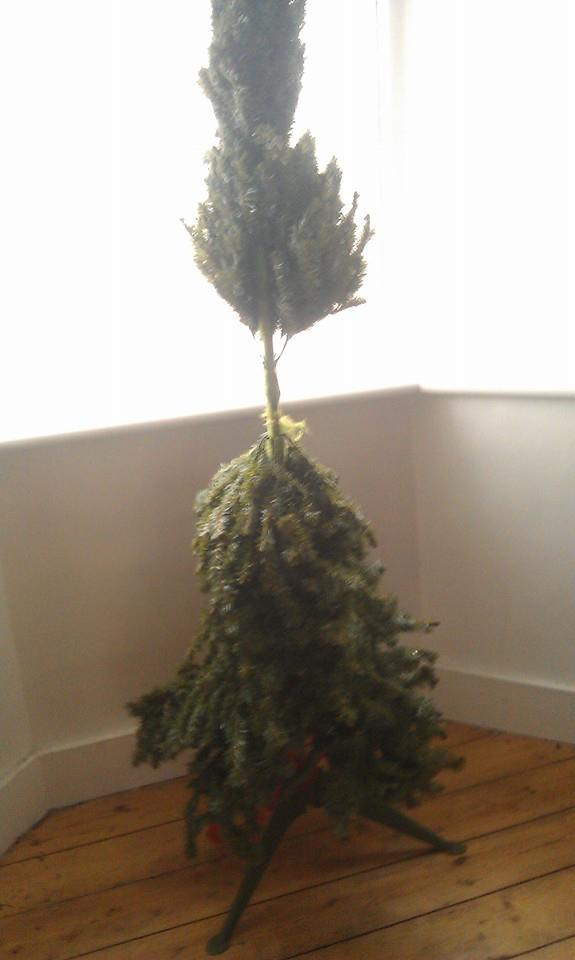 sad mutated christmas tree