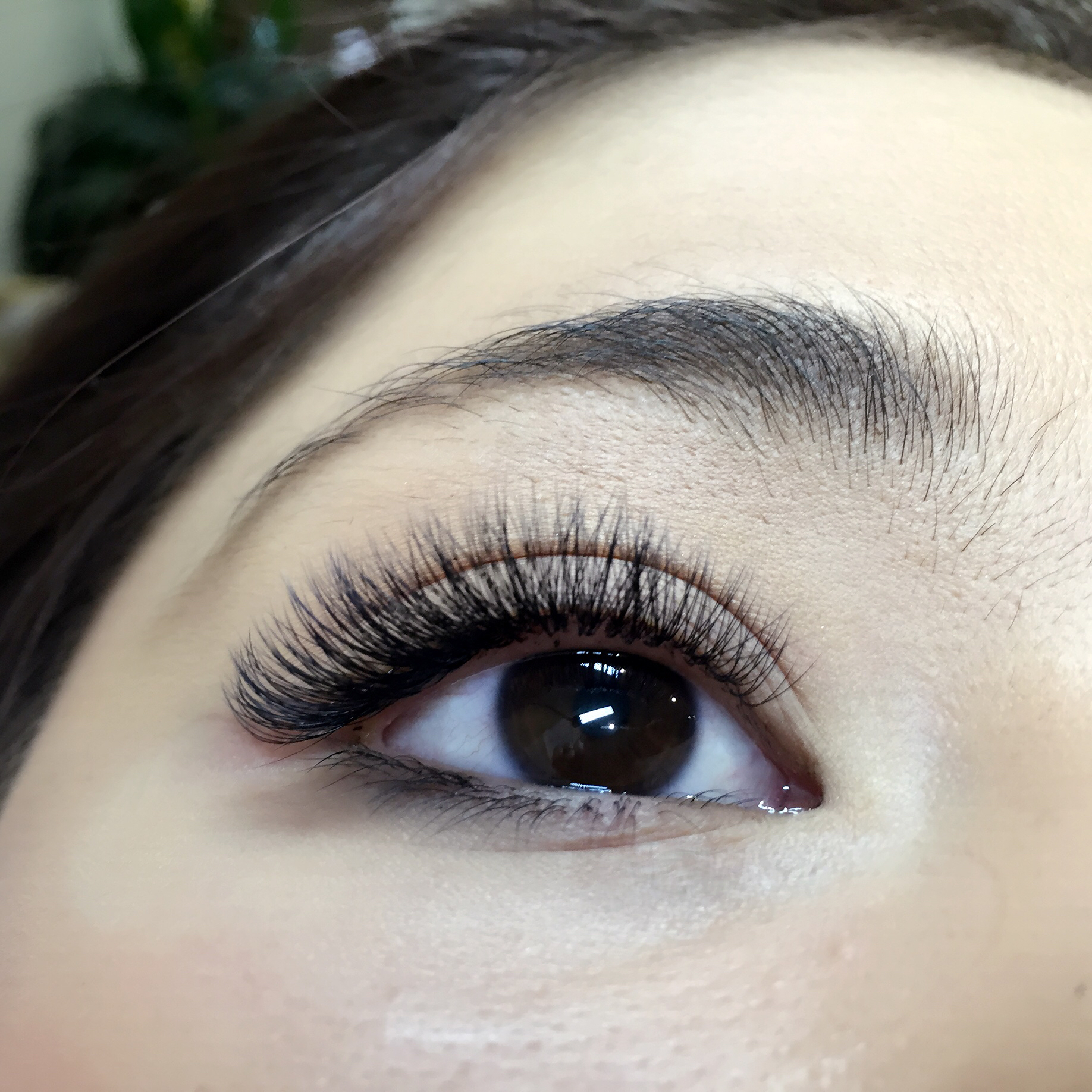 Marico Salon Eyelash Extensions Melbourne Cbd Salon