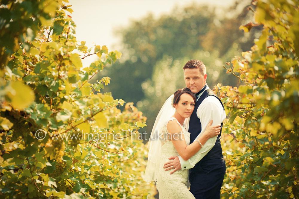 Wedding Photography Llanerch Vineyard