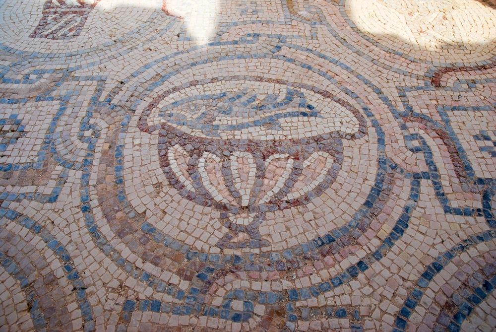 Fish mosaic in the desert