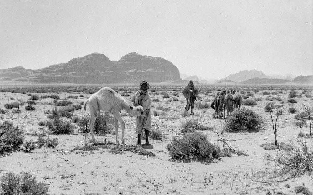 Nomadiske beduinar i Wadi Rum i sørlege Transjordan