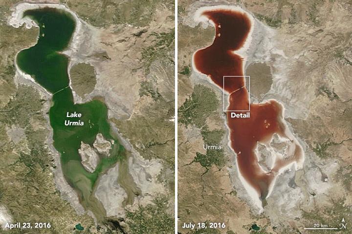 Fargeskiftet er tydeleg på desse to satelittbileta tatt av NASA mellom april og juli 2016 ( NASA Earth Observatory )