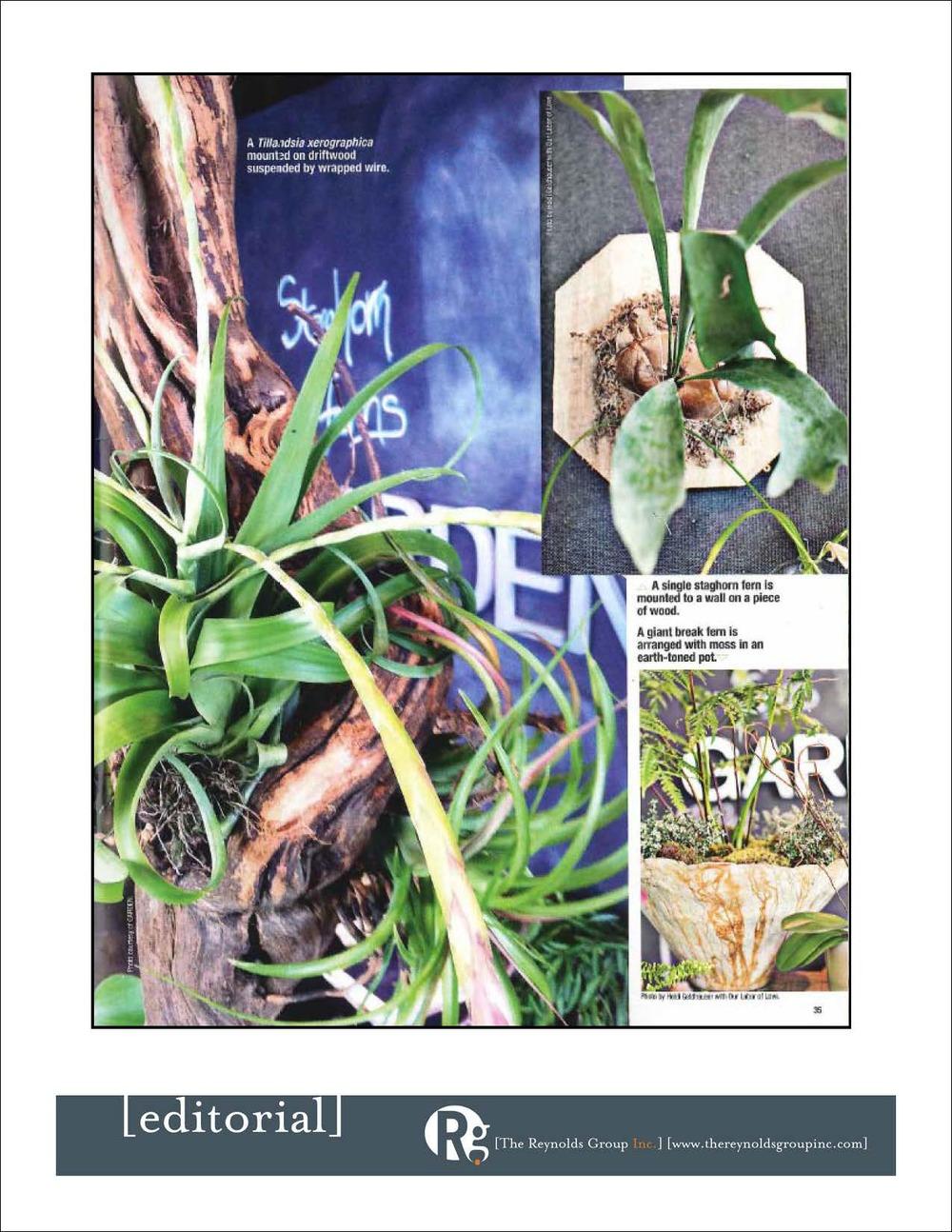 9.11.Garden.State-by-StateGardening_Page_5.jpg