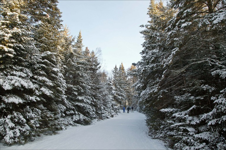 Cross country skiing giant 39 s view lodge in the for Keene valley cabin rentals