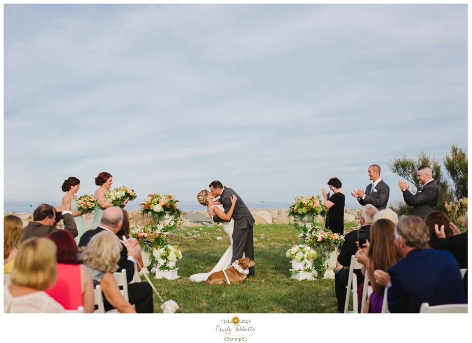 Scituate Intimate Backyard Beach Wedding with Lilly The Hero Pit Bull in Massachusetts - Emily Tebbetts Photography 1.jpg