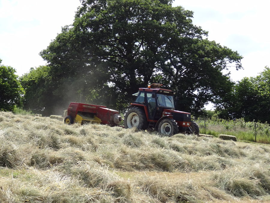 tractor making haybales on a sunny day
