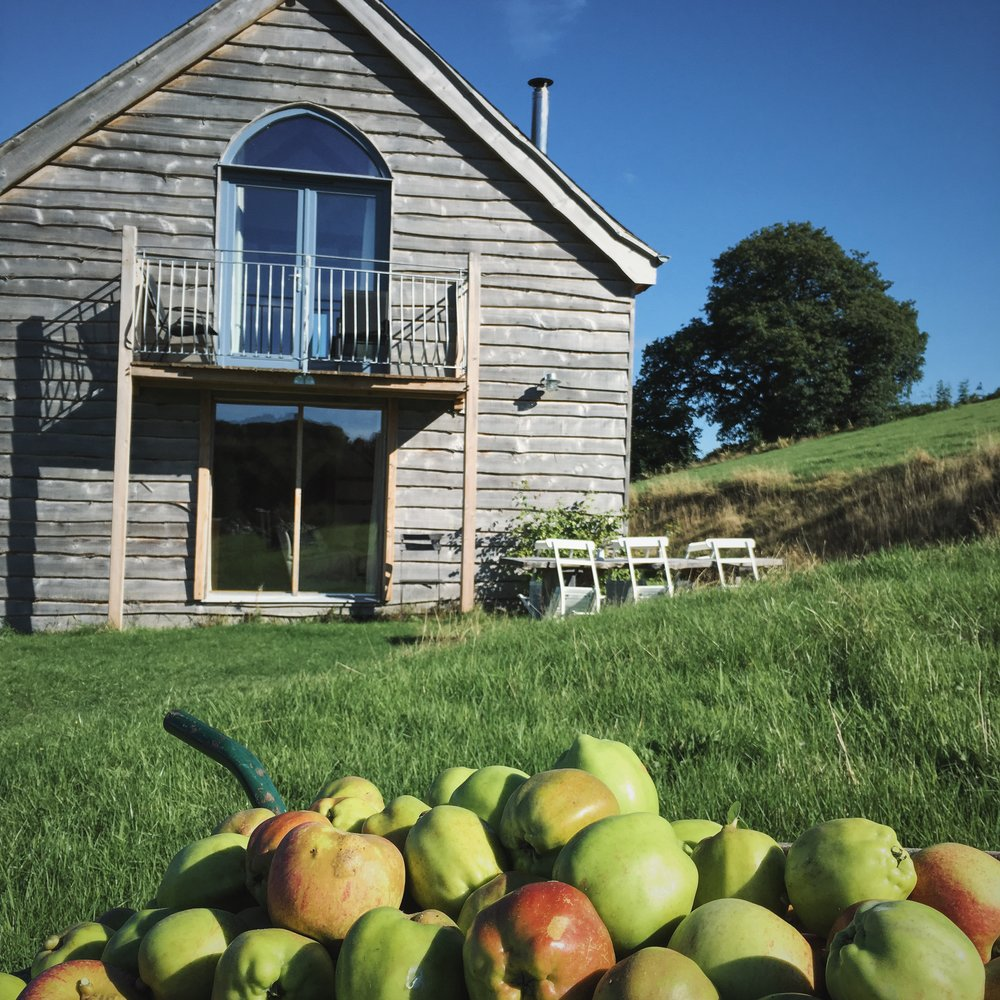 wooden cottage with apples in wheelbarrow