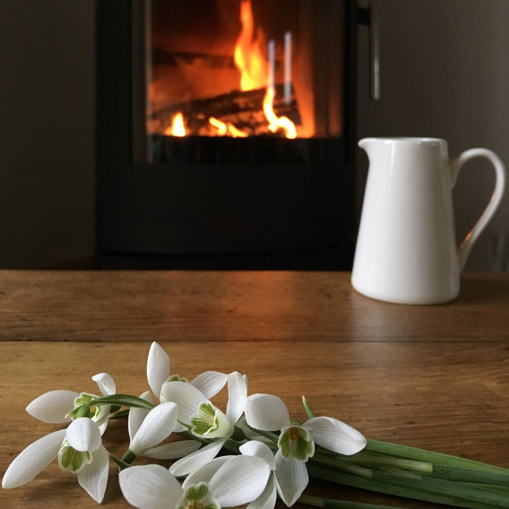 snowdrops on table with fire in background