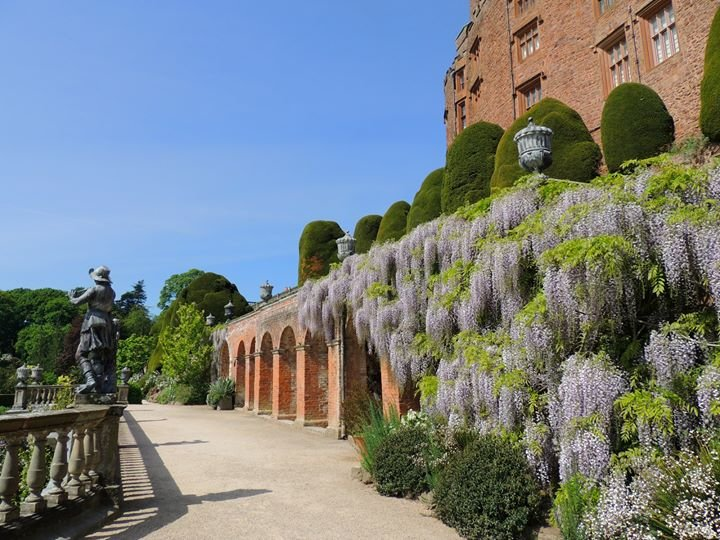 powis-castle-and-gardens-national-trust