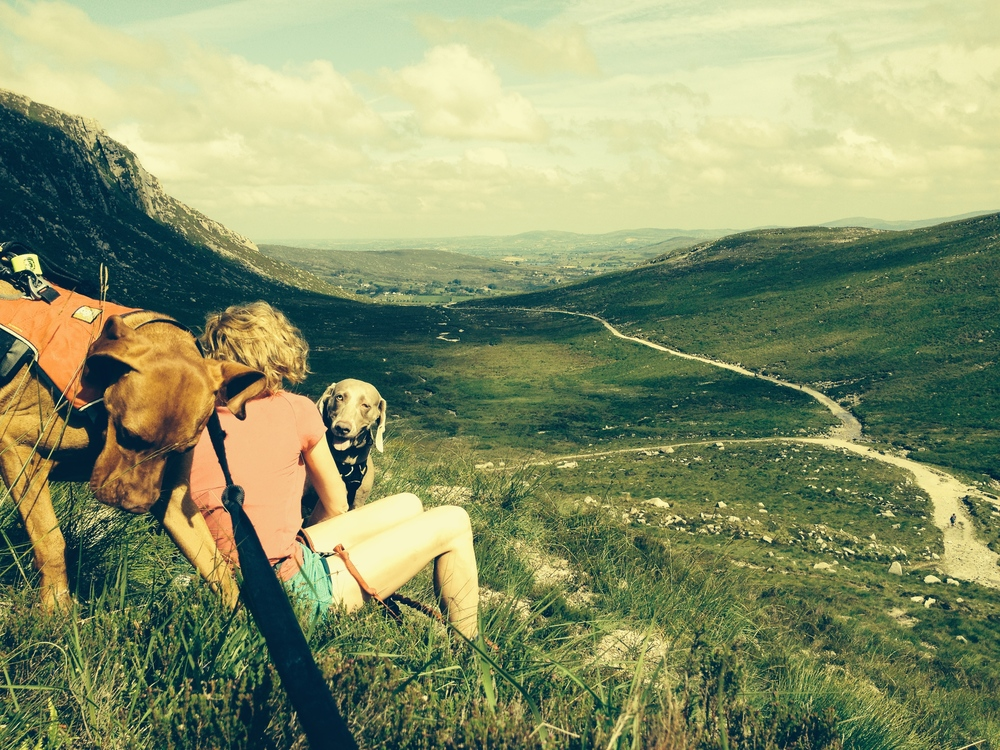 A day of adventure running in the Mournes.