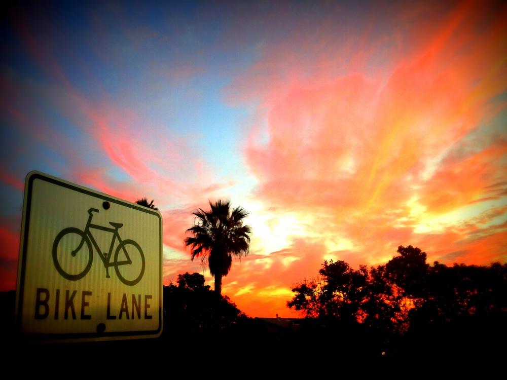 bike lane.jpg