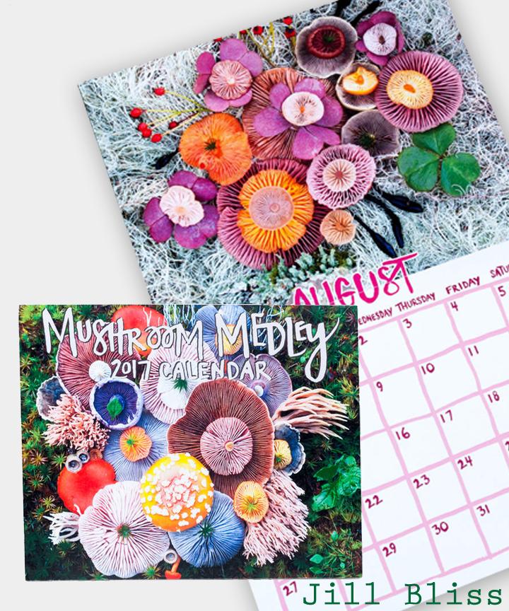 jill-bliss-mushroom-medley-2017-wall-calendar-MAIN-576848f966c19-580.jpg