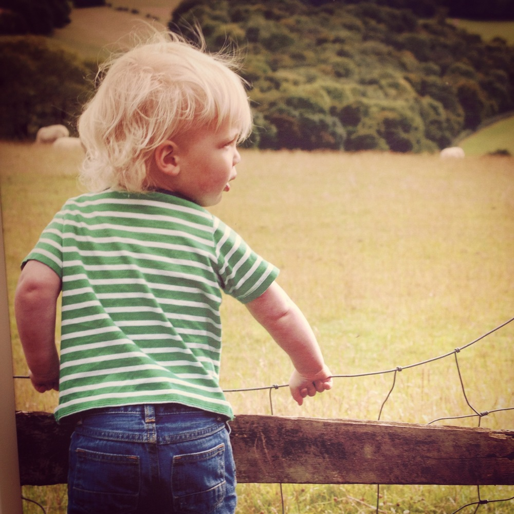 The picture that hangs above our fireplace, toddler Jasper enjoying the view...