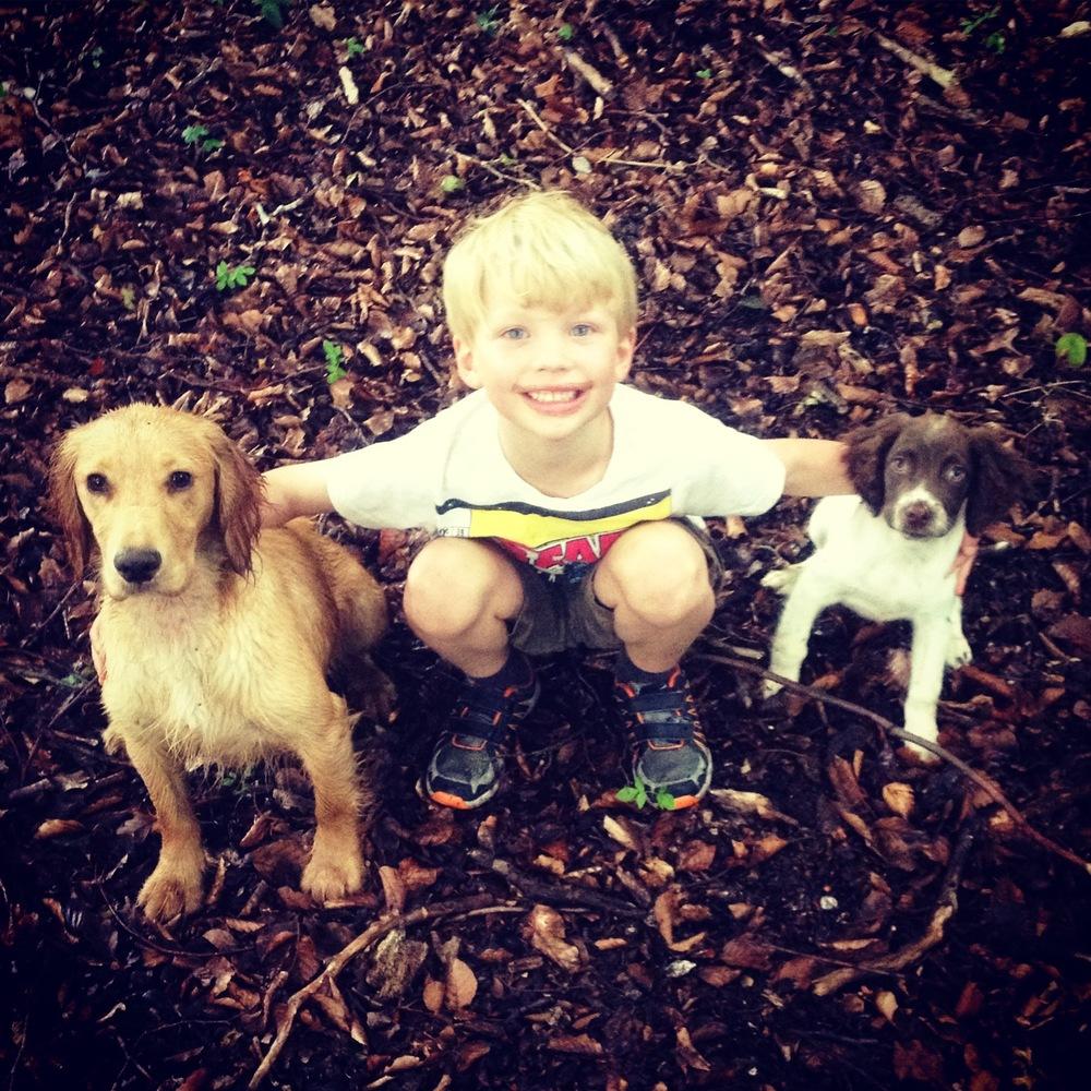 Roo, Jasper & Tiggy.