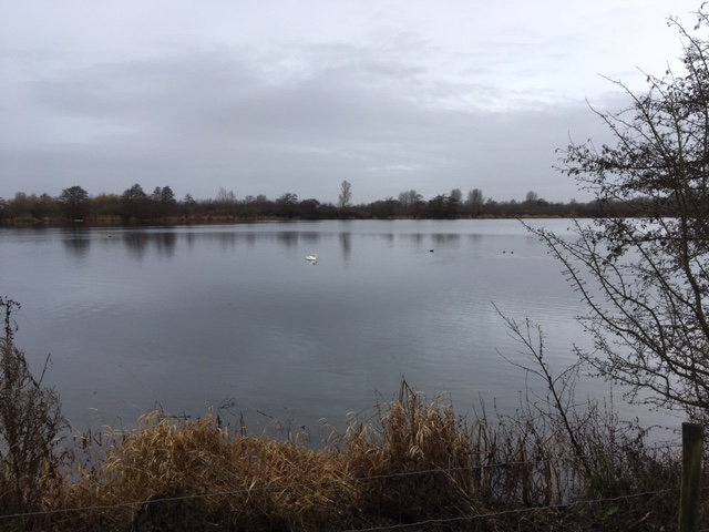 A cold grey day at Lower Mill estate, but nevertheless a huge amount of wildlife to see!