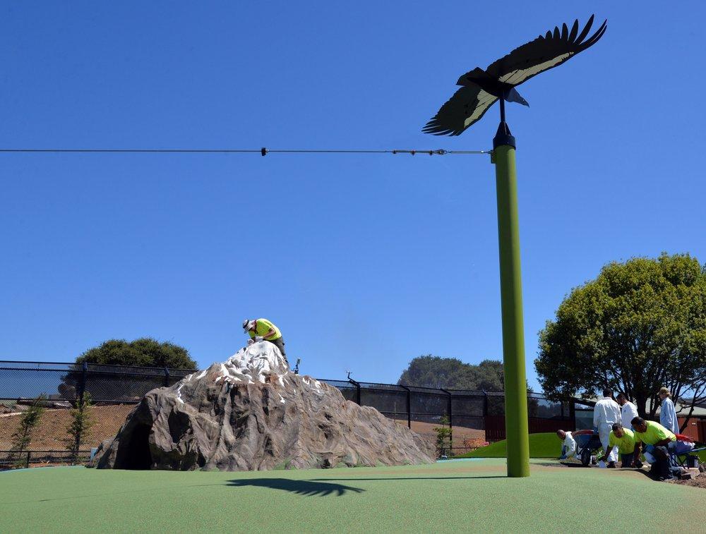 California Condor Glider