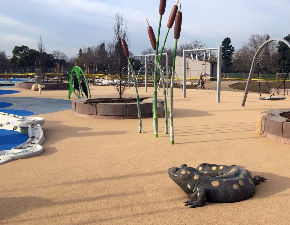 Accessible Bay Area Playground